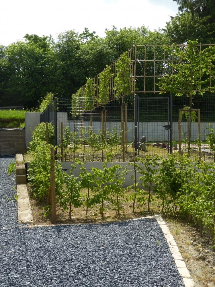 Cr ations jardin contemporain auxylence entreprise et for Architecture de jardin